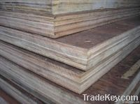 Container Flooring Plywood (28mm)