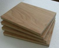 Container Flooring Plywood