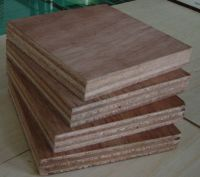 Container Flooring Plywoods
