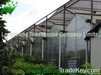 Polycarbonate Greenhouse