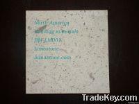 Beige Limestone suppliers, exporter