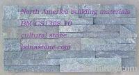 Forest Green Quartzite panel supplier, exporter