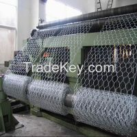 Galvanized Chicken Wire Mesh / Hexagonal Wire Mesh