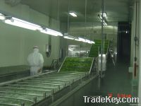Soybean Processig  Machinery