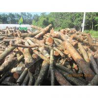 Barbecue Charcoal  100% longan wood - top seller for UK market