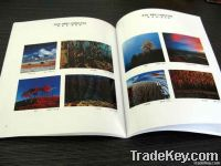 Colourful high quality Book Printing
