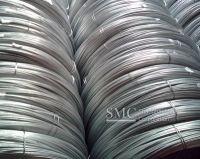 Hot Dip Galvanized Steel Wire(GI Wire).