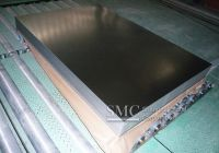 Hot Dip Galvanized Steel Sheet (for Curtain Wall)