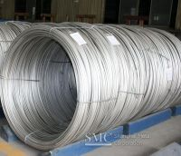 Stainless Steel Tie Wire(Lashing Wire )