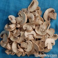Dried champignon mushroom on sale