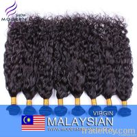 Top Quality Virgin Malaysian Hair Water Wave