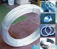 Fine SS/304, 316, 310, 302 Stainless Steel Wire