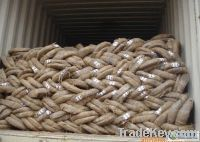 Smooth coil galvanised metal wire BWG5-BWG36 Factory