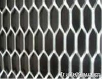Tortoise-shell-type Expanded Wire Mesh