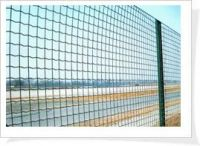 Plastic Holland wire mesh fence, pvc coated holland wire mesh fence