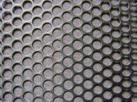 Perforated Wire Mesh(wire mesh)