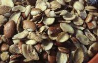 Dikka Nuts/Wild Mango seeds<Investigan Irvingia Gabonensis>
