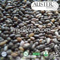 Chia Seeds - Natural, Bulk