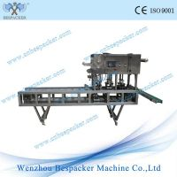 XBG-60V square cup fill and seal machine with vacuum