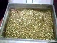 : Gold nuggets