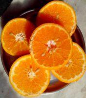 Mandarine / Kinow