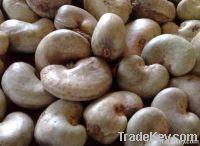 High Quality Cashew Nuts | Dried Fruits | W240 Cashew Nuts Suppliers | W320 Cashew Nut Exporters | Buy  WW230 Cashew Nut