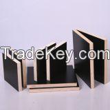 Plywood/Film Faced Plywood/ MDF/ Chip Boards/Okoume/Hardwood Plywood