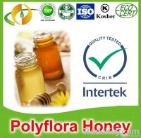 Organic pure polyflora honey