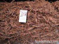 good quantity copper  scrap 99.9