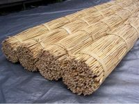 Rattan material raw in Vietnam