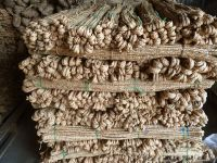 Seagrass fiber natural Hyacinth water