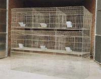 Commodity /Fattening Rabbit Cage