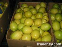 Fresh Lemons