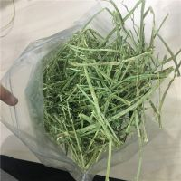 High Quality Animal Feed Alfalfa Hay