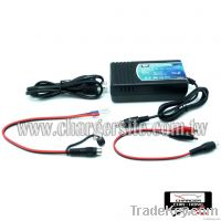 12V Auto Battery Charger