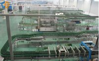 Glass Bottle Conveying system