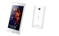 Low Price of 5 Inch Quad-Core with Android system (Q5000)
