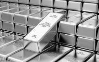 Platinum Bars for Sale | Buy Platinum Bars | Money Metals, 10 Oz Platinum Bars