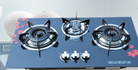 gas stove and hood