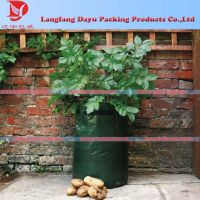 PE woven Gardening potatos growing planter bag