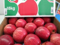 Fresh Gala Apple, Fuji Apple, Golden Apple, Red Delicious Apple
