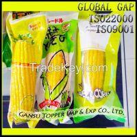 Sweet Corn in Vacuum Bag