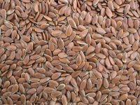 Organic Linseed & Flax Seed