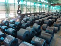 hot rolled steel sheet / coil