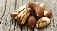 Pistachio Nuts, Cashew Nuts, Macadamia Nuts, Pecan Nuts, Pine Nuts, Brazil Nuts, Hazel Nuts, Almond Nuts, Walnuts, Betel Nuts, Ginkgo Nuts, Apricot Kernels, Cacao Nibs