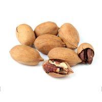 Pecan Nuts, Roasted and Salted Pecan Nuts, Pecan Nuts Kernels, Organic Pecan Nuts, Pecan Nuts sliced, Pecan paste