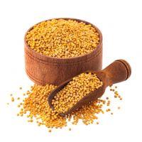 Mustard Seeds / Organic  Mustard Seeds / Yellow and Black Mustard Seeds