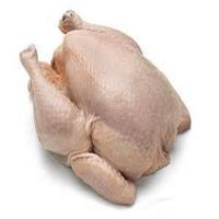Frozen whole halal chicken
