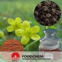 100% Natural Cat's Claw Extract