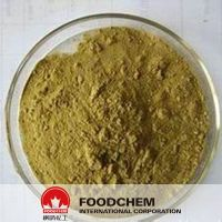 Liver Care Product Artichoke Extract Cynarine